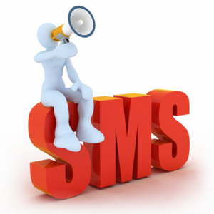 SMS-Marketing-How-Its-Changing-in-2013-300x300
